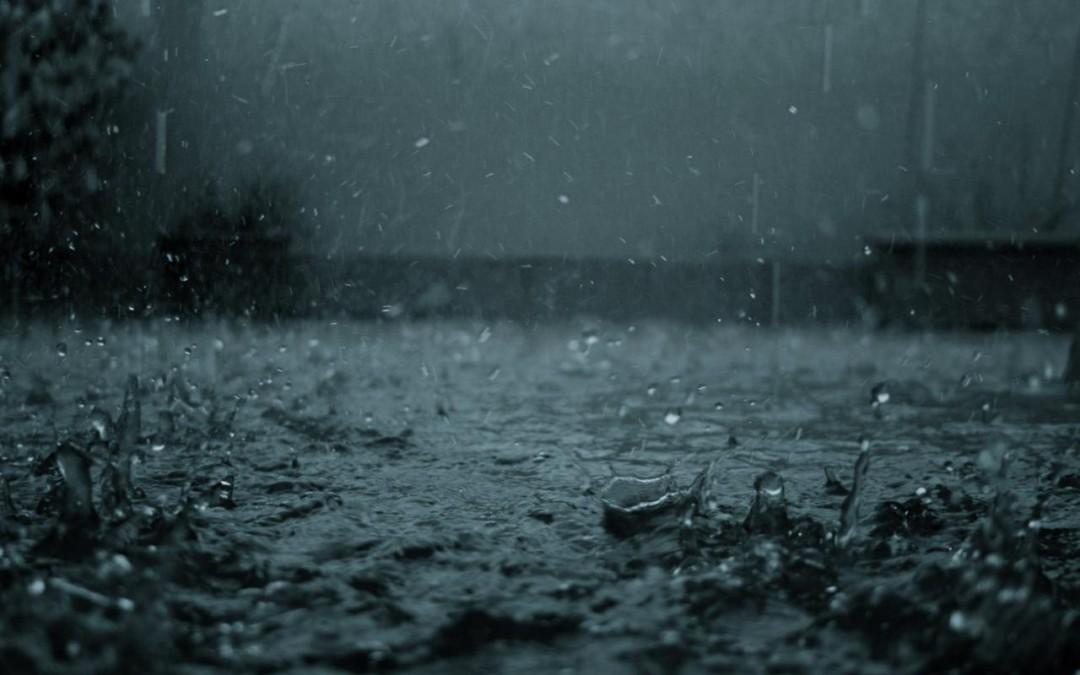 Musim Hujan, Foto Apa yang Bagus?